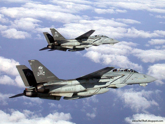 JLM-Navy-aircraft_F-14 Tomcats.jpg