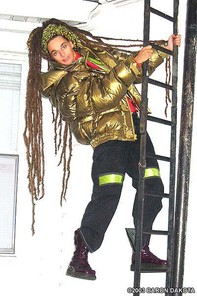 ari_on_ladder.jpg